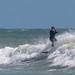 Surf - Ile de Ré