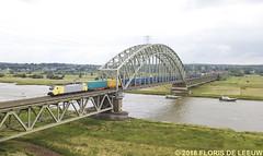189203_Arnhem-Zuid_170618 (florisdeleeuw) Tags: lte rzepin tweety tilburg 189203 rijn arnhem