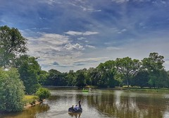 🎶'All summer long' 24/30 😊🎶 (LeanneHall3 :-)) Tags: lyrics title challenge summer lake blue sky skyscape white clouds trees branches green leaves pedalo swan landscape samsung