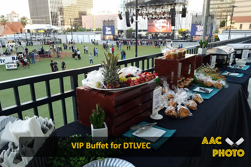 "VIP Buffet • <a style=""font-size:0.8em;"" href=""http://www.flickr.com/photos/159796538@N03/29178289768/"" target=""_blank"">View on Flickr</a>"