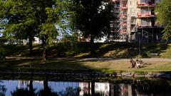 By the river (Mattias Lindgren) Tags: nikond600 50mmf18 linköping rewind summer sweden