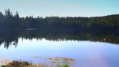 Early Morning in Nova Scotia (abrideu) Tags: abrideu canoneos100d novascotia halifax canada landscape forest water lake trees reflections ngc