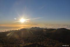 Сонце на Тенеріфе, Канари  InterNetri  25