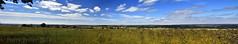 Northern Ryedale in Summer (Barry Potter (EdenMedia)) Tags: barrypotter edenmedia nikon d7200 nikonflickrtrophy ryedale panorama