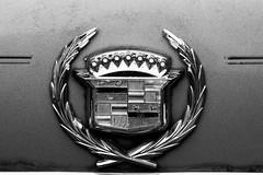Cadillac #1 (_Lionel_08) Tags: cars cadillac rustic black white auto automobile automotive broken junk emblem sedan sedandeville old car classic canon rebel xsi