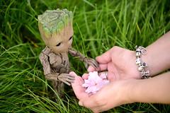 florets (Vlastelin Nichego) Tags: toys hottoys groot babygroot