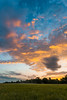 One Morning Sunset Series No. 2 (thefisch1) Tags: sunrise sunset sky color colorful grass crop tree orange blue pink clouds intense