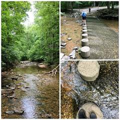 Scott's Run Nature Preserve (karma (Karen)) Tags: mclean virginia scottsrunnaturepreserve parks woods streams steps collages triptych