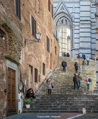 Stairs (Ignacio Ferre) Tags: stairs escaleras italia italy toscana tuscany siena arquitectura architecture building edificio people gente nikon