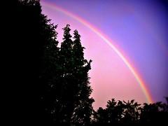 GERMANY, Himmel mit Regenbogen , 76271/10208 (roba66-on vacation) Tags: himmel sky clouds wolken cielo roba66 rainbow regenbogen natur garten garden jardin giardini park nature naturalezza baum bäume tree trees arbes deutschland leonberg