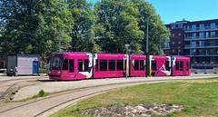 Zomeravonden (Peter ( phonepics only) Eijkman) Tags: amsterdam city combino gvb tram transport trams tramtracks trolley rail rails streetcars strassenbahn netherlands nederland nederlandse noordholland holland