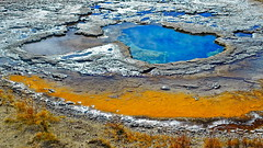 Minerals and Bacteria are the Artists (blacky_hs) Tags: minerals bacteria artists usa yellowstone