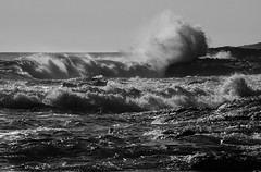 Crashing Surf at Botanical Beach (Paul T. Marsh/PositivePaul) Tags: olympus40150mmlens paultmarsh leicad3 leicadigilux3 surf april2018 britishcolumbia blackwhite paulmarshphotography ocean wwwpaulmphotographycom crashing victoriabc monochrome vancouverisland waves lightroomcc sea telephoto canada pacificnorthwest tides 2018 springvacation