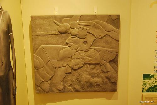 Музей Тура Хейєрдала, Гуїмар,Тенеріфе, Канари  InterNetri  07