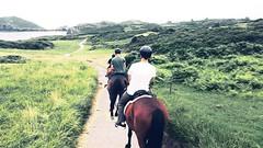 Vente a conocer la costa de llanes con nosotros! #cuadraelalisal #caballos #horses #horseslovers #horseslife #rutasacaballoasturias #rutasacaballo #celorio #verano2018