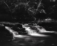 img150 (Adam Clark Photography) Tags: blackandwhite black white photography photo picture river water tones bronica gs1 bigstopper wales natue ilford delta film shootfilm sharp analog analogue