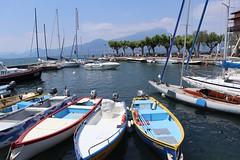 Torri del Benaco (c.colombini) Tags: colors veneto sunday barchecolorate porticciolo boats italia lake lagodigarda torridelbenaco