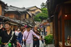 DSC_0055 (sxcxxhx) Tags: japan osaka kyoto hydrangea flower trip voyage 日本 大阪 京都 旅行