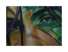 zoo art show 003 (cadadiamaslejos) Tags: art streetart graffiti eyes green colors look pentax urbanart