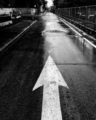 Rue Saint Patrick Arrow (MassiveKontent) Tags: pointsaintcharles montreal bw contrast city monochrome urban blackandwhite street photo montréal quebec photography bwphotography streetshot architecture asphalt concrete shadows noiretblanc blancoynegro arrow road