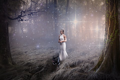 Charley Woods (Tim Glidden) Tags: girl woman pug dog woodland woods forrest forest female misty mist fog photoshop photomanipulation