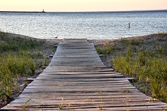 Lake Superior Shores (paulaliimatta) Tags: sand seagulls michigan lakesuperior