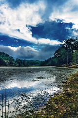 On A Rainy Day, Never Say Goodbye... (Constantinos_A) Tags: sony alpha a6300 sky field mountain tree soil bushes clouds storm green yellow blue nature landscape outdoors trikala peloponnese mountainside dirt greece grass animal road forest lake lagoon weather water