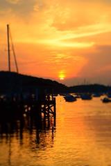 Golden harbor (dylangaughan43) Tags: nikon nikonphotography nikond5200 cloudsstormssunsetssunrises harbor water color newyork longisland northport dock boats