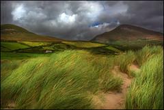 Green Green Grass (angelofruhr) Tags: wolken irland ireland strand