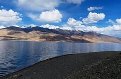 Mountain Lake - Ladakh - Transhimalaya 4522m Alt (forest venkat) Tags: mountain lake water sky landscape grasslands grassland bay sea seabay seabed seabird bays ladakh transhimalaya 4522m alt tso moriri or tsomoriri lakemoriri mountainlake intranshimalayaladakhkashmir india kashmir mountains
