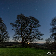 Skeletons In The Wind (TVZ Photography) Tags: thekymin caeymaen monmouth monmouthshire wales nationaltrust trees stars lights night evening longexposure sonya7r voigtlander 21mm ultron 1x1 square