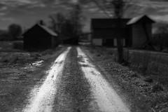 Into the darkness (Helena Normark) Tags: farm silverroad dark mood atmosphere ust uståsen trondheim sørtrøndelag trøndelag norway norge sonyalpha7ii a7ii 50mm lensbaby edge50 lensbabyedge50 lensbabylove seeinanewway