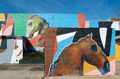 Wild horses (dangr.dave) Tags: architecture downtown fairfield historic texas tx mural horse freestonecounty
