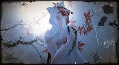 Kitsune03 (Light Aoshimori) Tags: kitsune bishie ikemen bishounen youkai yokai japanese folklore kimono wzero white mask mapple