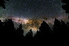 Milky Way rising over the trees (jde95tln) Tags: milkyway milky way night photography trees forest jackson demonstration state canon california northerncalifornia tamron 500 rule 500rule star stars planets planet galaxy guardians heavenly