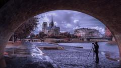 Notre Dame Profile (photoserge.com) Tags: notre dame de paris blue profile mood reflection composition architecture portrait water seine