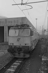 domo II set 67 #50 (train_spotting) Tags: beuracardezza domoii tigre tigrone e652061 trenitaliacargo trenitalia ticargo divisionecargo mir merciitaliarail nikond7100