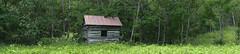 Greyledge Cabin Panorana (efo) Tags: color digital notfilm panorama virginia botetourt greyledge purgatory cabin abandoned woods rural