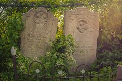 IMG_7715 (nl_mikeheffernan) Tags: newfoundland sun streetphotography grass radialfilter headstone 50mm naturallight primelens canon graveyard landscape