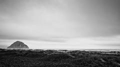 Rock on a beach (apg_lucky13) Tags: canoneosm2 canonm2 morrobay sanluisobispo 2018 22mm ca canon cassidy jdc jasdaco m2 slo college efm f2 mirrorless beach monochrome ocean bw nature rock overcast