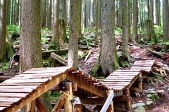 Team-Konstructive-Dream-Bikes-Trail-Trip-Vancouver-2018-Northshore-Seymore-Ladder-Bridge