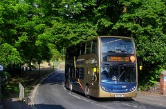 Chelston Gold (Better Living Through Chemistry37) Tags: route32 stagecoach stagecoachdevon stagecoachsouthwest transport transportation vehicles vehicle yn63bwz 15931 enviro400 scania scanian230ud 32