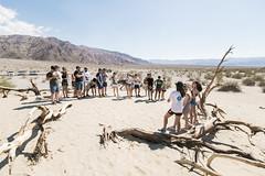 18-07-06 (Death Valley)-61 (Xavier Verdaguer) Tags: