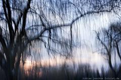 20180318-_MG_5740-400D-TJ-fotoist-de-Bearbeitet-2-Bearbeitet (tobias jeschke fotoist.de) Tags: bäume halle himmel landschaft langzeitbelichtung winter verwaschen