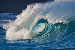 Aquamarine (BlindSides) Tags: hawaii waimea bay big wave