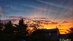 Enjoy your Friday! #sunrise #dawn #earl614 #cbus #614 #Columbus #Ohio #photo #Photography #picoftheday #photooftheday #nature #naturelovers (Edale614) Tags: photooftheday sunrise nature photo earl614 photography picoftheday cbus 614 columbus dawn ohio naturelovers
