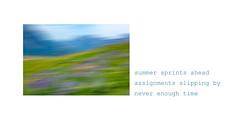 Summer Haiku (Blazingstar) Tags: studio 26 time summer haiku waterton