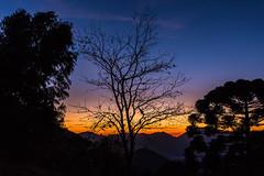 Parque Estadual dos Três Picos - Nova Friburgo - Rio de Janeiro (mariohowat) Tags: novafriburgo sunrise amanhecer alvorada nascerdosol natureza riodejaneiro trêspicos parqueestadualdetrêspicos brasil brazil canon6d