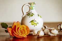 Rose and Jug (Marcia Fasy) Tags: flowers jug rose cotton plants