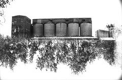 (von8itchfisk) Tags: olympus 35mm om10 washi doubleexposure blackandwhite monochrome